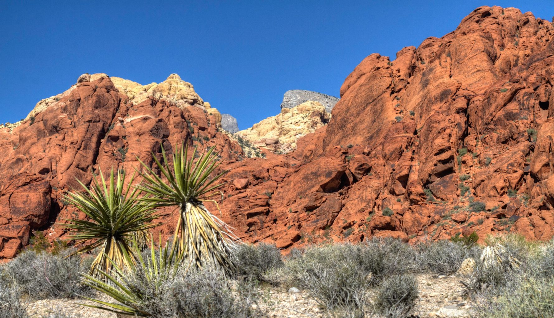 512photoz Red Rock Canyon, Nevada